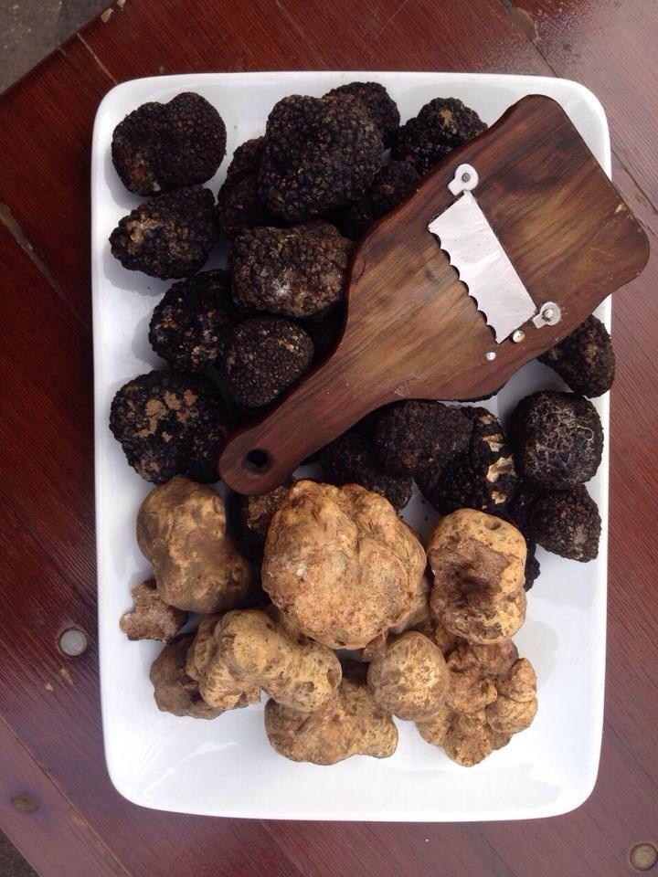 foie-gras-pate-de-foie-gras-buy-white-truffle-caviar-truffles-luxury-foods-galore!-this-is-shaved-foie-gras,-shaved-black-truffle,-and-russian-caviar.-fine-dining-truffle-eat