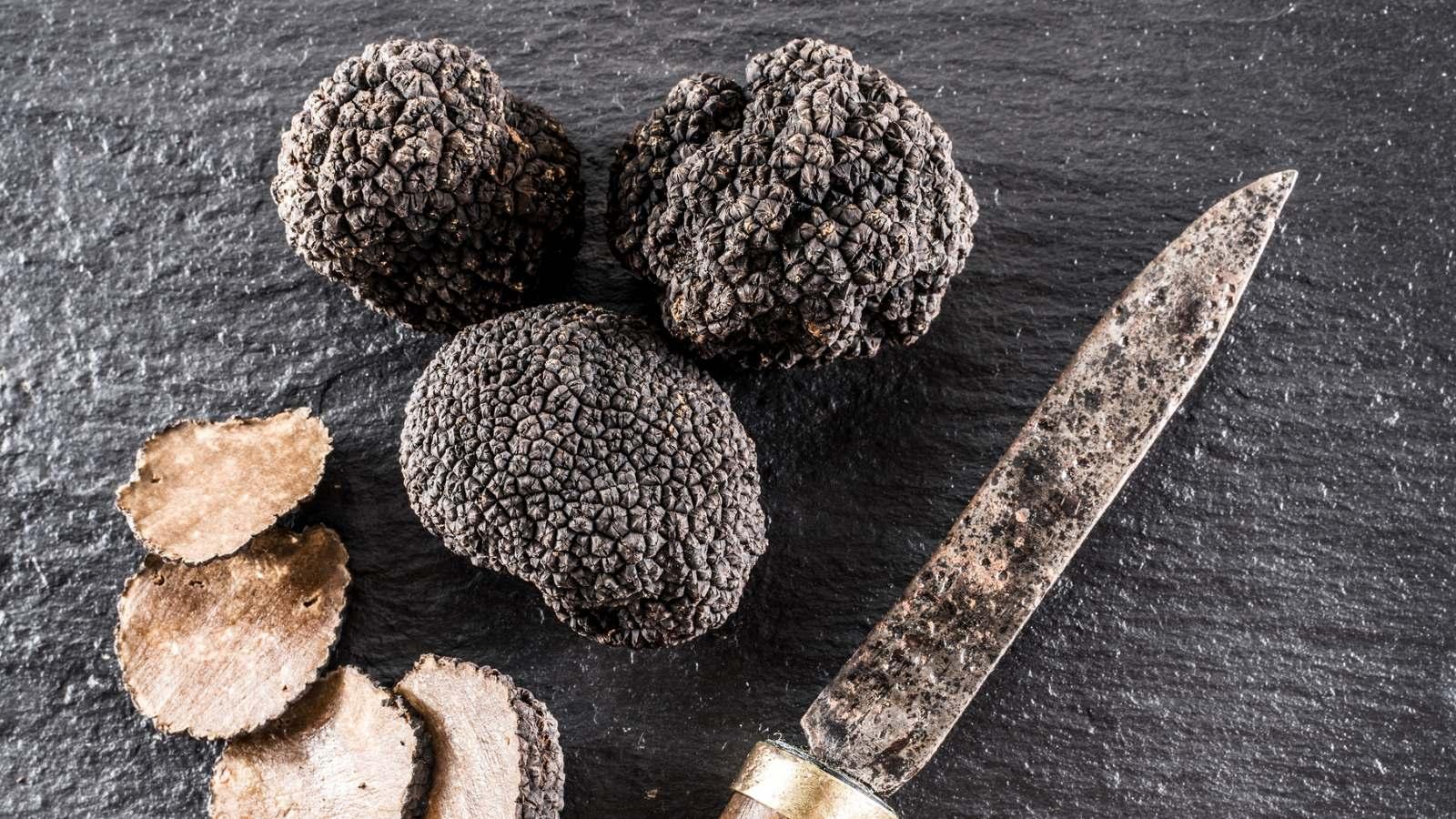 truffle-sex-secrets-revealed!-epicureans-rejoice.