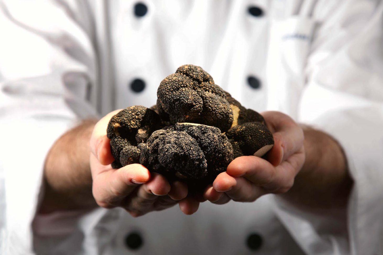 truffles-and-italian-reds