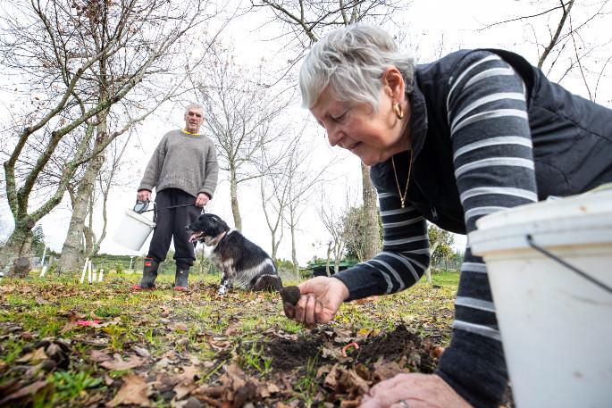 spain-has-little-appetite-for-truffles,-but-plenty-for-the-truffle-trade