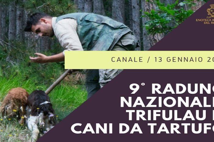 ix-raduno-nazionale-dei-trifulau-e-dei-cani-da-tartufo
