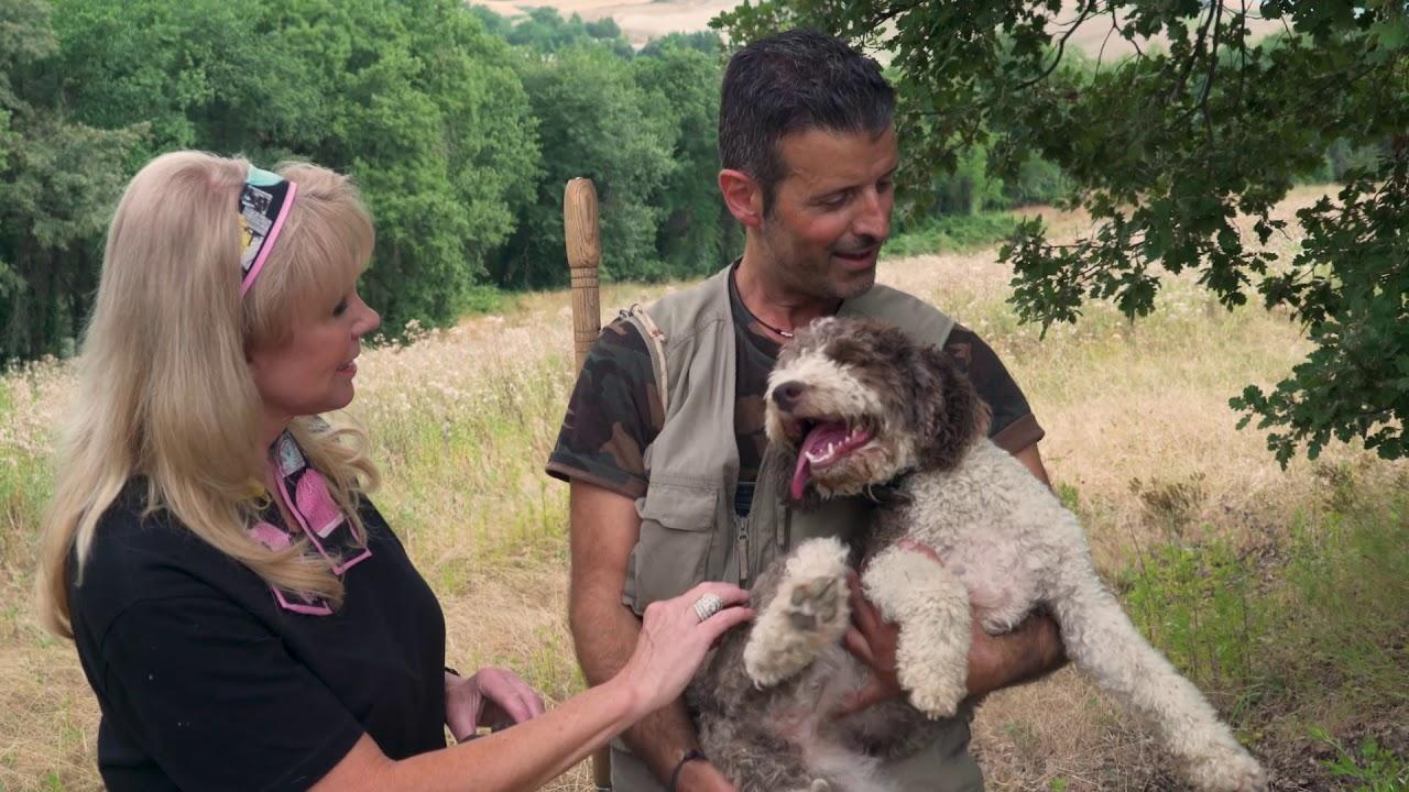 "truffle-hunting-siena-tartufi,-a-documentary-of-""laura-mc-kenzie's-traveler-"""