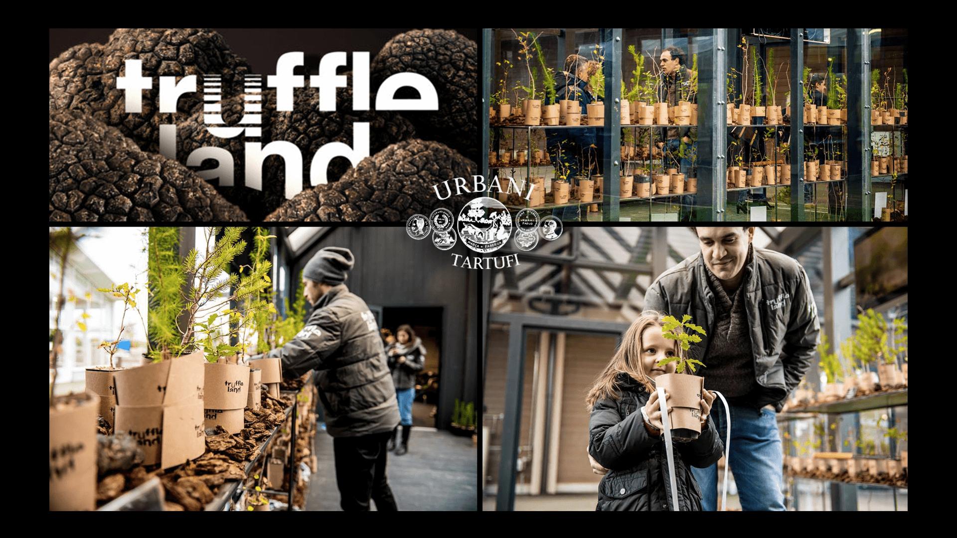 """urbani-tartufi""-la-tartuficultura-del-futuro-truffleland-truffleco.th"